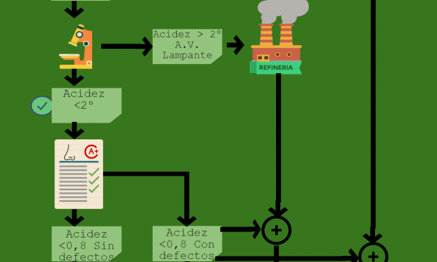 Regulaciones del Aceite de Oliva en el Mundo