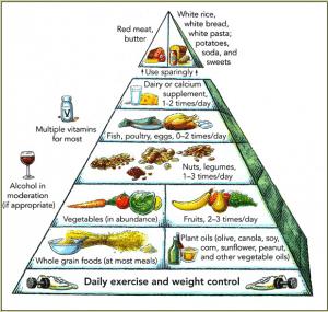 Harvard food pyramid 1