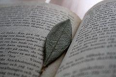 hoja de olivo libro