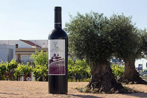olivo y vino